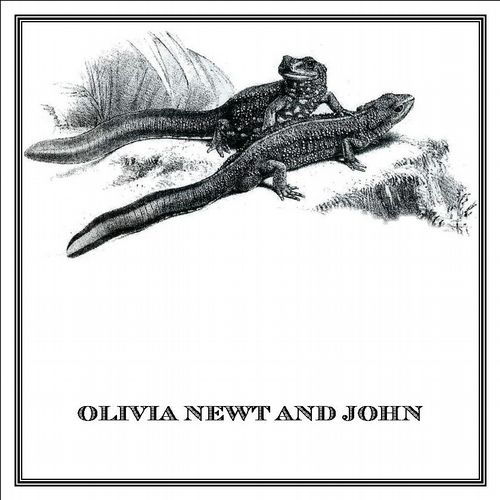 Zoomorphic' Greeting Card Olivia Newt and John